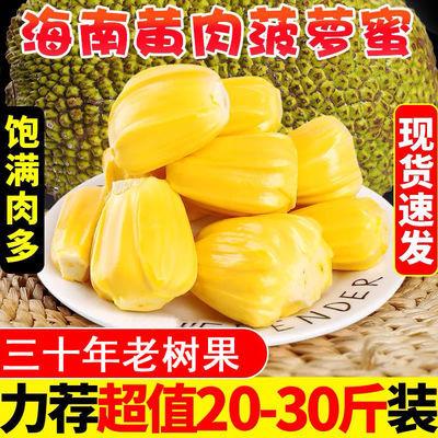 海南黄肉菠萝蜜新鲜热带水果应当季三亚老树精选菠萝蜜木菠萝整个