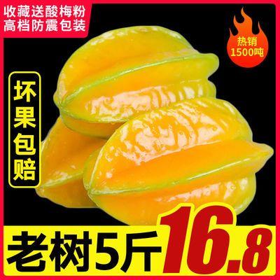 红龙杨桃水果当季新鲜福建漳州扬桃甜应季热带孕妇整箱批发现摘