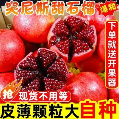 突尼斯软籽红石榴新鲜水果10斤包邮会理甜石榴薄皮甜石榴新鲜无籽