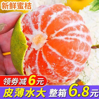 现摘橘子水果新鲜甜蜜桔1/10斤应季孕妇青桔子批发薄皮整箱金桔
