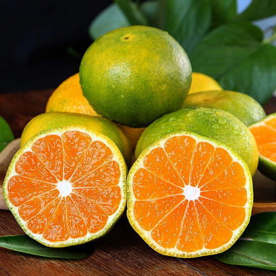 四川橘子新鲜甜蜜橘现摘水果孕妇薄皮青橘子超甜蜜桔子特大果批发