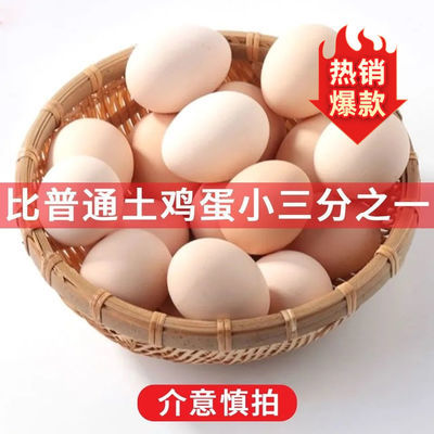 农家散养土鸡蛋初生蛋小个子30枚小码蛋35g顺丰包邮破损包赔