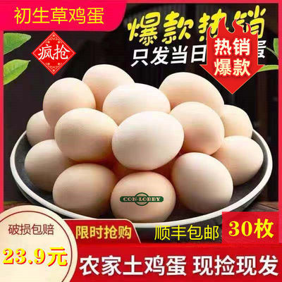 正宗农家散养初生草鸡蛋45g土鸡蛋上午捡蛋下午发30枚装顺丰包邮