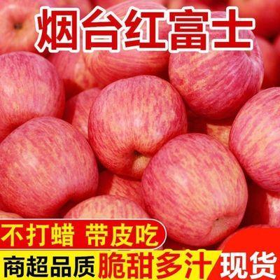 正宗烟台栖霞红富士苹果脆甜3-10斤新鲜水果应当季整箱冰糖心平果