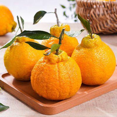 高山丑橘水果新鲜整箱10斤丑柑丑桔橘子5斤批发柑橘1斤