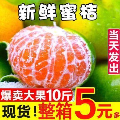 现摘无籽蜜桔新鲜橘子应季水果蜜橘青桔子黄皮桔子整箱批发1/10斤