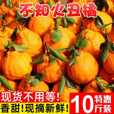 10斤不知火丑橘新鲜丑八怪橘子桔子当季水果包邮耙耙柑橘蜜橘2斤