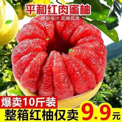 福建平和蜜柚红心柚子红肉三红蜜柚新鲜孕妇当季水果新鲜大果