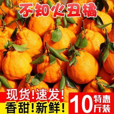 高原丑橘新鲜水果丑桔不知火丑八怪橘子当季孕妇水果桔子耙耙柑橘