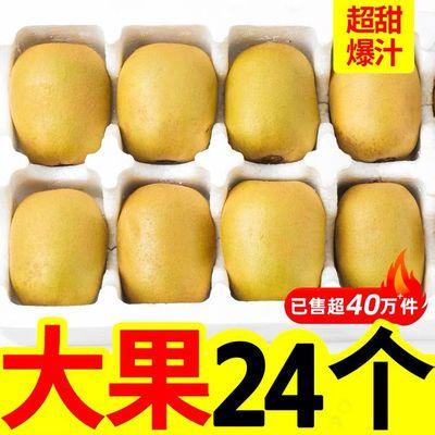 四川蒲江黄心猕猴桃新鲜奇异果当季孕妇水果弥泥猴桃大果整箱批发