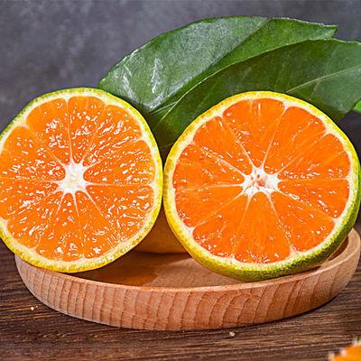现摘云南蜜桔酸甜开胃特早青皮蜜橘新鲜当季水果孕妇桔子薄皮橘子