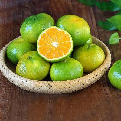 云南蜜桔10斤蜜橘高山酸甜开胃新鲜青皮橘子当季孕妇水果批发无籽