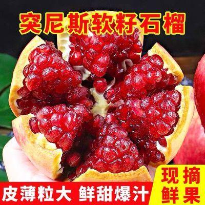 75854/正宗四川会理超甜突尼斯软籽石榴新鲜应季水果3/5斤整件批发包邮