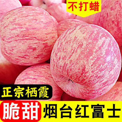 山东烟台栖霞正宗红富士苹果脆甜新鲜水果批发整箱3/5/10斤丑平果