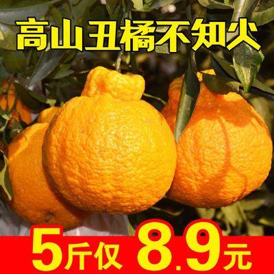 正宗丑橘不知火丑八怪丑橘橘子桔子甜蜜桔当季新鲜水果孕妇批发