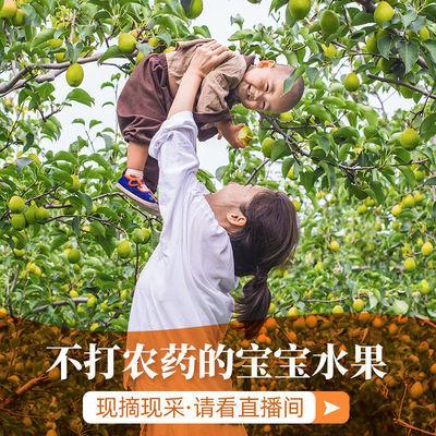 【中秋礼盒】水果新鲜香梨子当季批发应季水果皮薄超甜一整箱