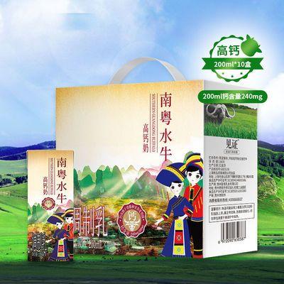 【官方正品】见证南粤高钙水牛奶200ml*10礼盒装儿童成人早餐奶