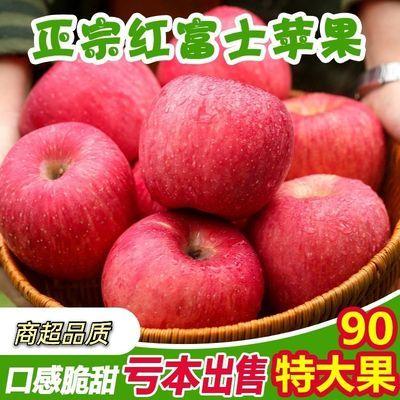 吉县红富士苹果新鲜果园直销脆甜多汁送礼整箱红富士苹果批发尝鲜