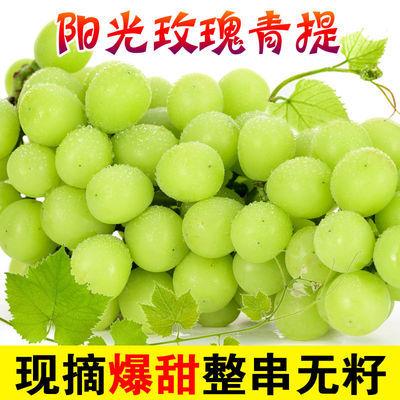 【顺丰包邮】6斤晴王阳光玫瑰青提葡萄无籽整串特大青提子新鲜2斤