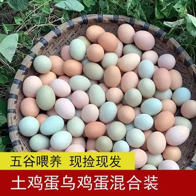 【新店冲量】正宗土鸡蛋农家散养新鲜绿壳乌鸡蛋混合装批发鲜鸡蛋