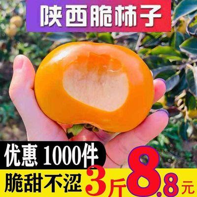 【10斤特价】现摘脆甜柿子硬柿子新鲜巧克力柿子水果3/5/10斤包邮