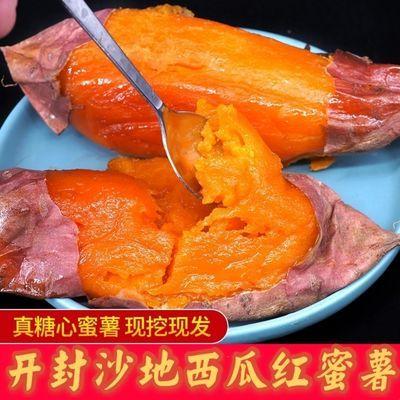 76114/自产自销河南沙地西瓜红红心蜜薯番薯地瓜新鲜红薯开封产地批发