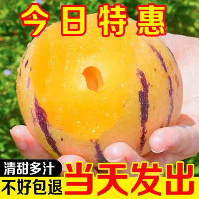 76202/【畅销】云南石林人参果圆果新鲜应季黄肉低糖孕妇水果整箱批发价