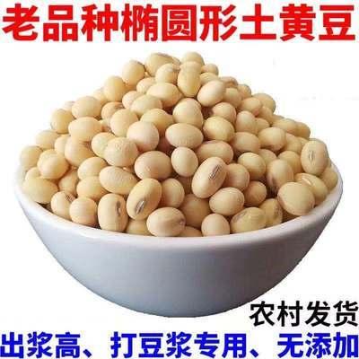 东北黄豆笨黄豆新鲜非转基因大豆早餐原料农家自种新鲜大黄豆杂粮