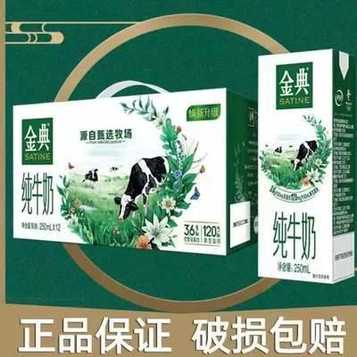 89913/【9月新货】伊利金典纯牛奶250ml*12盒整箱批发儿童学生营养早餐