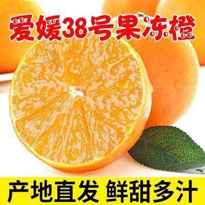 76361/现摘正宗爱媛38号果冻橙薄皮无籽当季时令清热新鲜水果整箱批发
