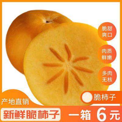 正宗广西脆柿子脆甜应季水果当季现摘新鲜热卖整箱10斤产地直供