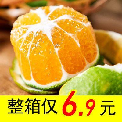 现摘橘子水果新鲜高原蜜桔桔子孕妇薄皮水果应季水果整箱包邮批发