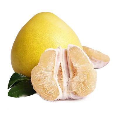 柚子 酸甜可口 白心蜜柚 单果900克 白心柚子 多仓发货
