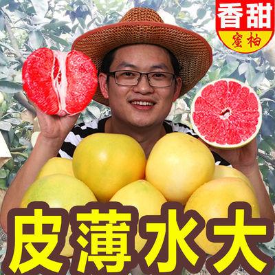 【自家果园】柚子红心蜜柚现摘新鲜水果正宗福建平和应季红柚包邮