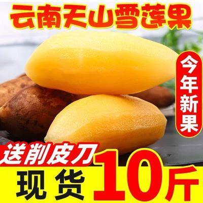 75434/【送削皮器】云南天山黄心雪莲果3/5/10斤当季新鲜水果整箱包邮