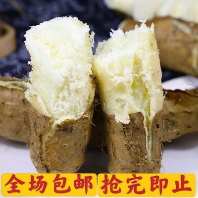 75645/广东毛薯甜薯猪仔薯农家新鲜现挖田薯火苕薯脚板薯粉糯自种山药