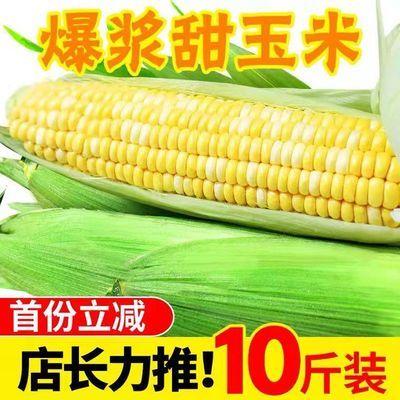黄金水果甜玉米新鲜生吃脆甜玉米低脂爆浆现摘玉米棒子整箱批发