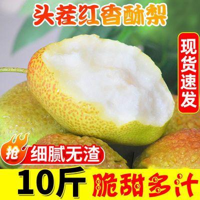 【脆甜多汁】红香酥梨水果新鲜当季库尔勒红香酥梨3/5/10斤整箱