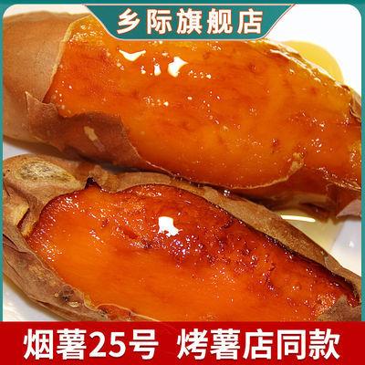 乡际新鲜现挖烟薯25号红糖心沙地蜜薯红薯超甜番薯地瓜批发5/10斤