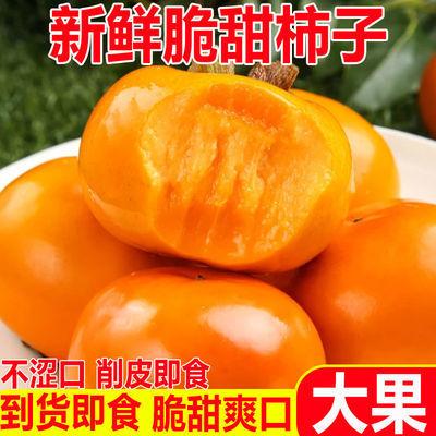 75927/【甜脆不涩】巧克力脆柿甜脆柿子当季时令现摘水果包邮整箱批发