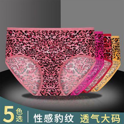 2-5条装性感豹纹印花加大码女士内裤中腰提臀中老年三角裤纯棉档