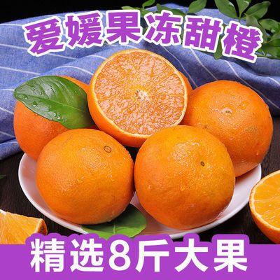 四川爱媛38号果冻橙5斤当季新鲜水果桔子柑橘子手剥甜橙批发5-8斤