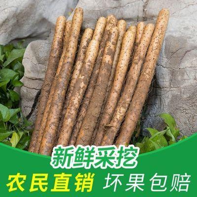 铁棍山药正宗粉糯怀山药小白嘴山药1/3/5斤多规格可选新鲜蔬菜