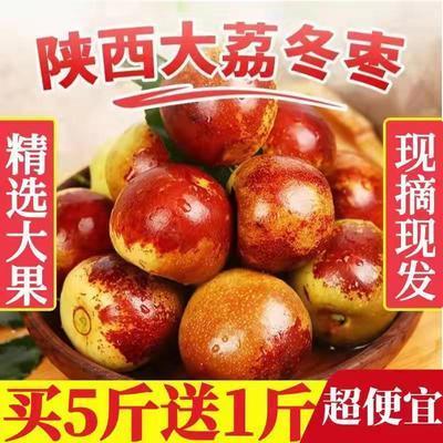 75580/陕西大荔冬枣新鲜脆甜枣子红枣5当季孕妇新鲜水果青枣整箱6包邮