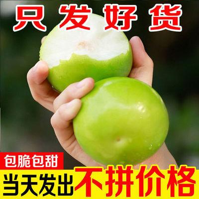 脆甜现摘牛奶青枣5斤当季新鲜水果应季一整箱批发特级大果非冬枣