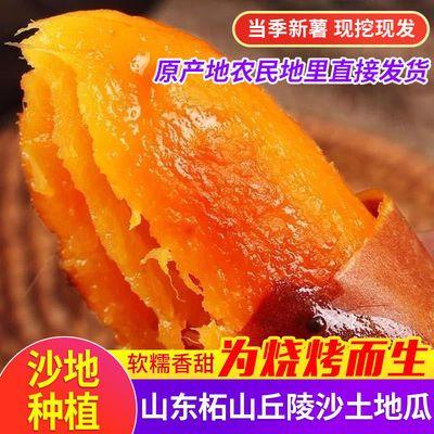 【批发红薯】农家自种烟薯25山东沙地红心烤地瓜番薯山芋板栗蜜薯