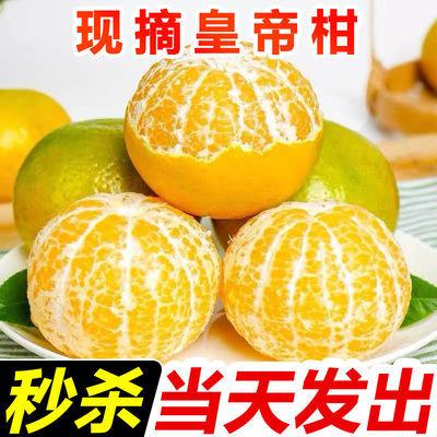 76168/特价广西武鸣皇帝柑新鲜当季整箱水果大果贡黄帝柑橘子沃柑蜜桔