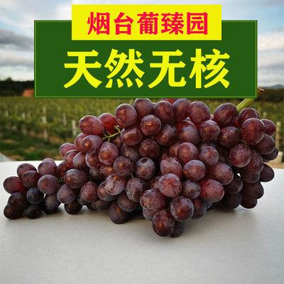 75988/无籽提子红宝石葡萄脆甜无核新鲜当季水果克伦生净重3/5斤克瑞森