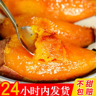 【现货速发】烟薯25真蜜薯2021年新鲜富硒稀瓤沙地蜜薯烤地瓜专用