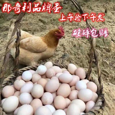 那奇利正宗农村散养土鸡蛋新鲜现捡草鸡蛋笨鸡蛋柴鸡蛋整箱批发